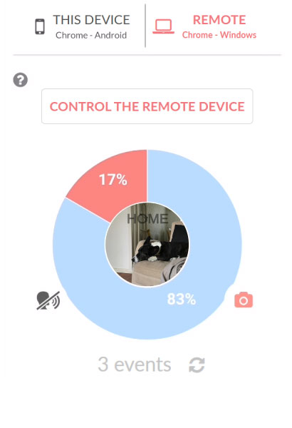 Live video connection to your dog